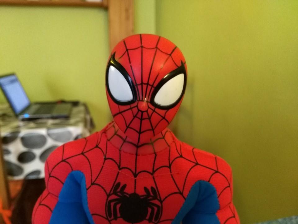 Gros plan Spiderman avec Flash